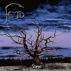 fejd_-_storm
