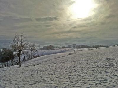 winterpanorama_2010