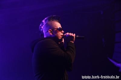 faderhead 03-2013