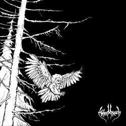 windbruch - no stars only full dark